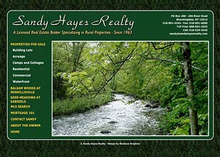 Sandy Hayes Realty